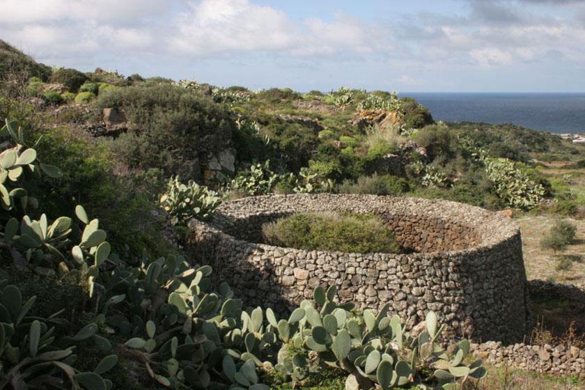 Giardino pantesco visit pantelleria - Terrazzamenti giardino ...